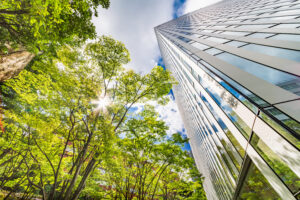 Energy Efficiency – Getting real: from EU law to action on the ground